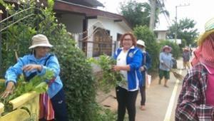 โครงการชุมชนสะอาด ปลอดโรค หมู่ที่ 8 ประจำปีงบประมาณ 2559 กองทุนหลักประกันสุขภาพระดับท้องถิ่น เทศบาลตาบลจระเข้หิน