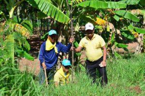 เทศบาลตำบลจระเข้หิน ร่วมกับพี่น้องประชาชน ทำกิจกรรม โครงการ รักน้ำ รักป่า รักแผ่นดิน ปลูกต้นไม้ริมถนนเส้นทาง จ.ส.ว.-บ้านไผ่ เนื่องในวโรกาส ฉลองสิริราชสมบัติครบ ๗๐ ปี