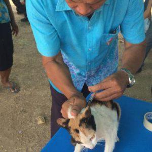 โครงการควบคุมและป้องกันโรคพิษสุนัขบ้า
